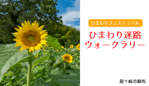 ひまわりフェスティバル開催!〜18,000本のひまわり(龍ケ崎市)
