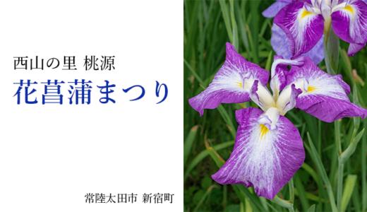 西山の里 桃源の花菖蒲まつり(常陸太田市)