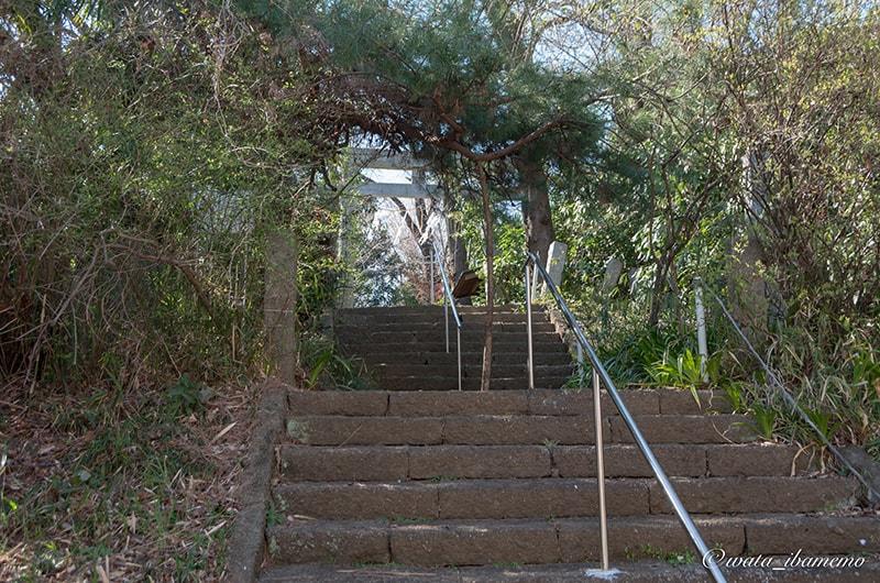 頼政神社の入口の石段