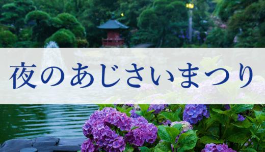 保和苑で夜のあじさいまつり開催(水戸市)