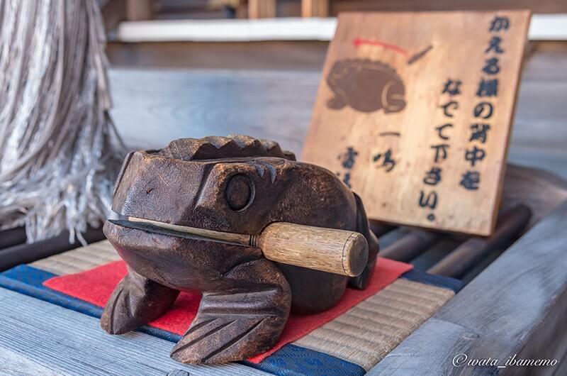 カエルの楽器