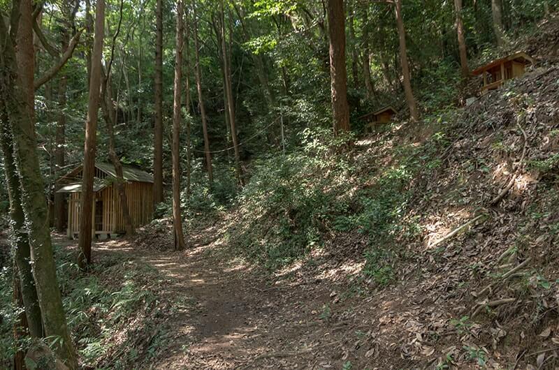 奥の院と手摩乳神社・脚摩乳神社