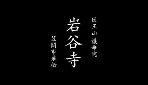 医王山 護命院 岩谷寺と薬師如来像|かさま文化財公開(笠間市)
