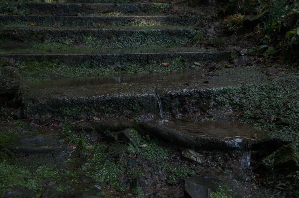 石段を流れる雨水