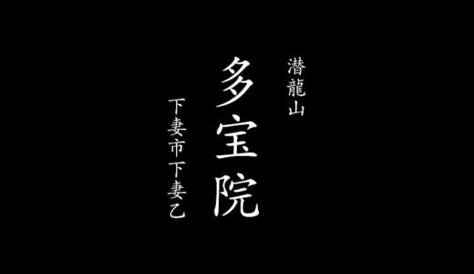 【隠れた桜の名所】潜龍山 多宝院と多賀谷氏|御朱印(下妻市)