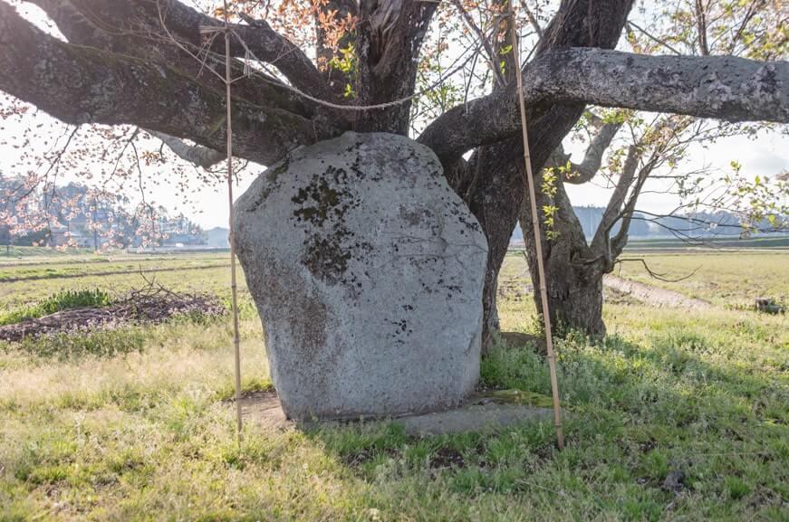 新治の井の石碑