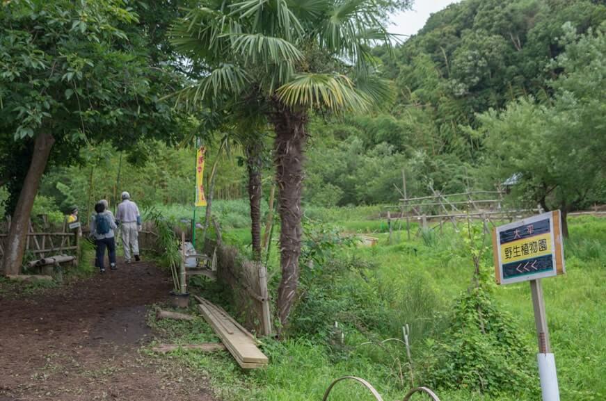 大平野生植物園入り口