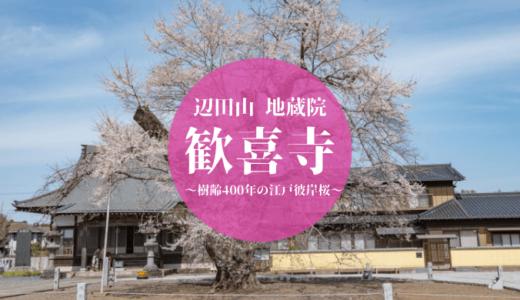 歓喜寺と江戸彼岸桜(坂東市)