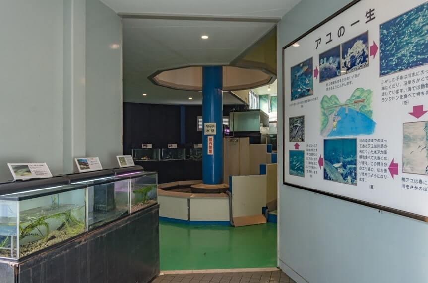 タッチ水槽・大型水槽のあるエリア