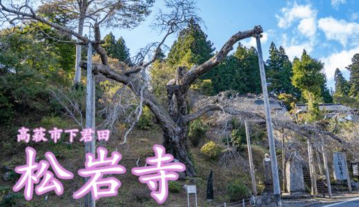 松岩寺と山桜|高萩市