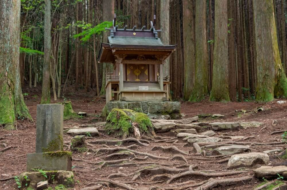 薩都神社(中宮)の社殿