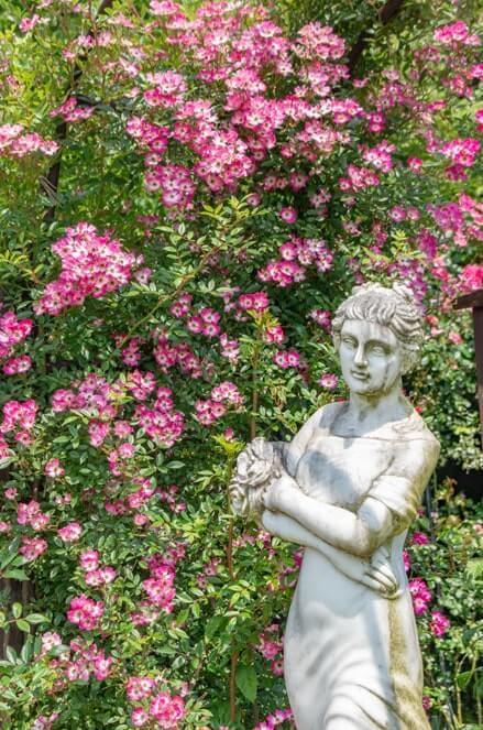 欧風彫刻と花々