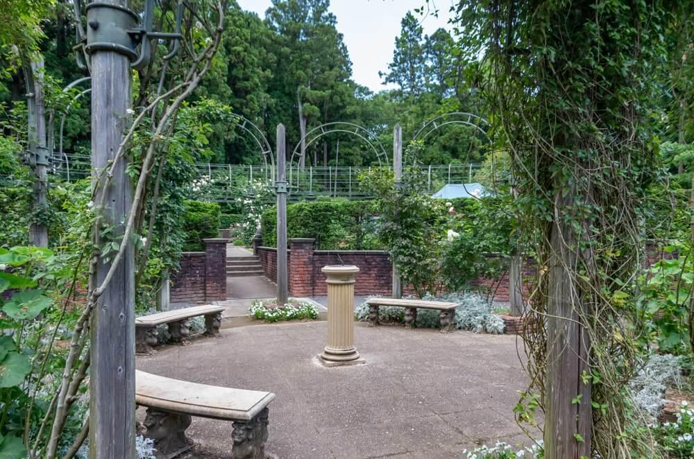 秘密の花苑の中心